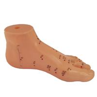 Product Μοντέλο Βελονισμού Πέλματος 15cm (Foot Acupuncture model) base image